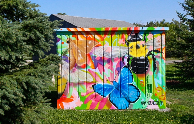 Phyllis Rawlinson Park Colourful Shed