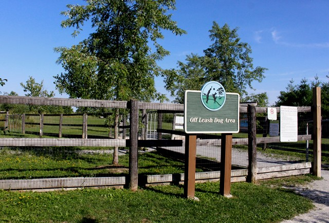Phyllis Rawlinson Park Off Leash Dog Park