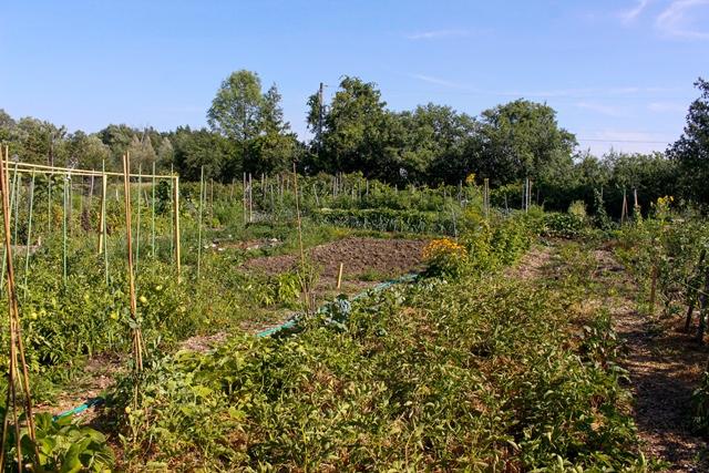 Phyllis Rawlinson Park Garden