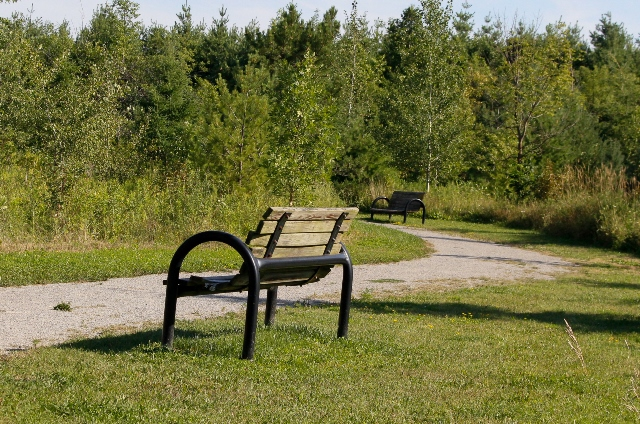 Phyllis Rawlinson Park Path and benches