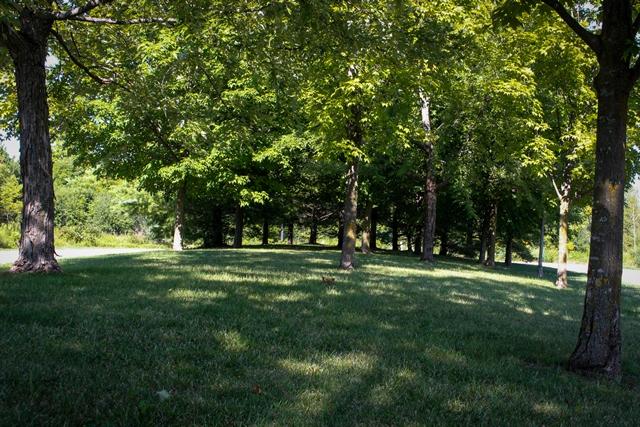 Phyllis Rawlinson Park